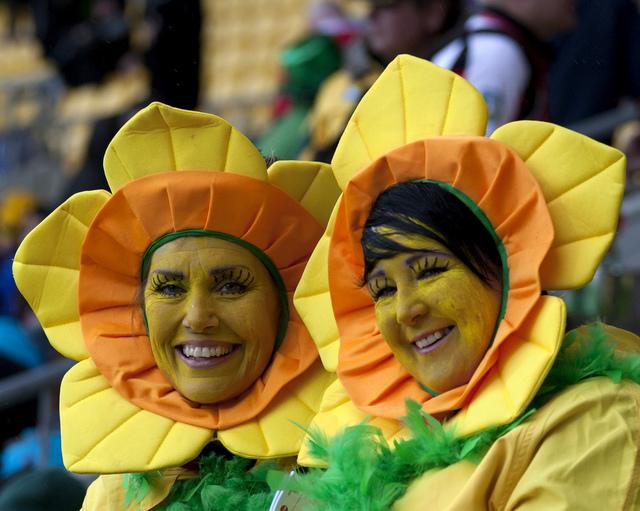 Wales rugby fan1.jpg